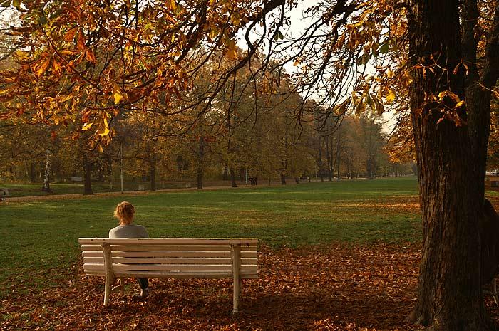 Красивые картинки одинокая женщина в парке на скамейке девками